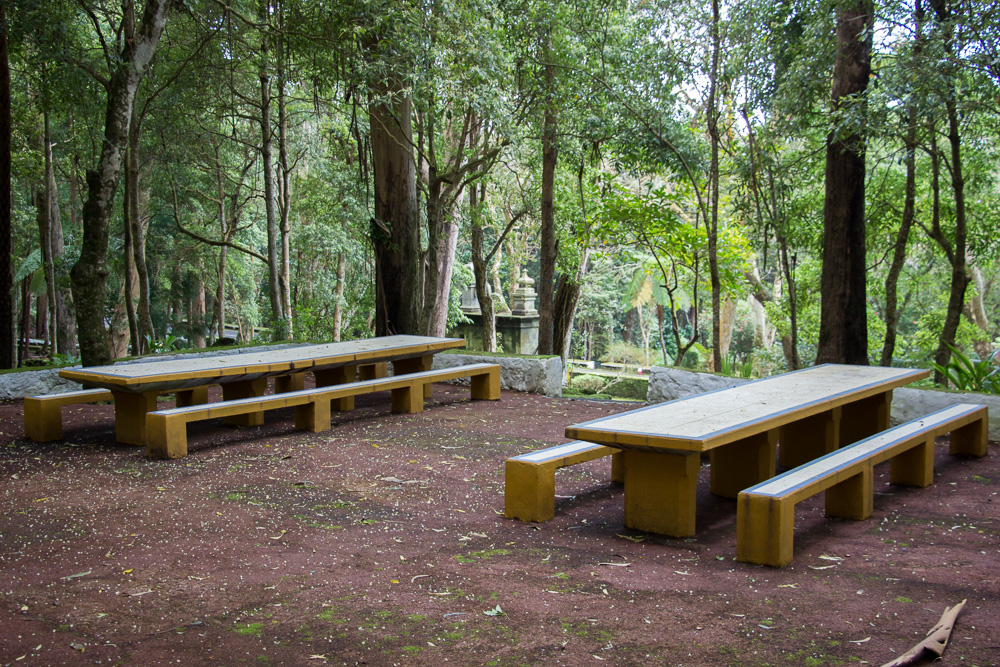 Forest seating